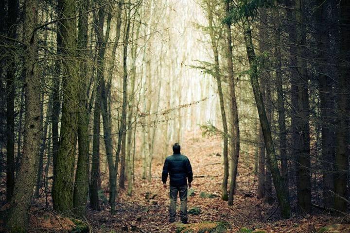 У лісі на Долинщині заблукав чоловік