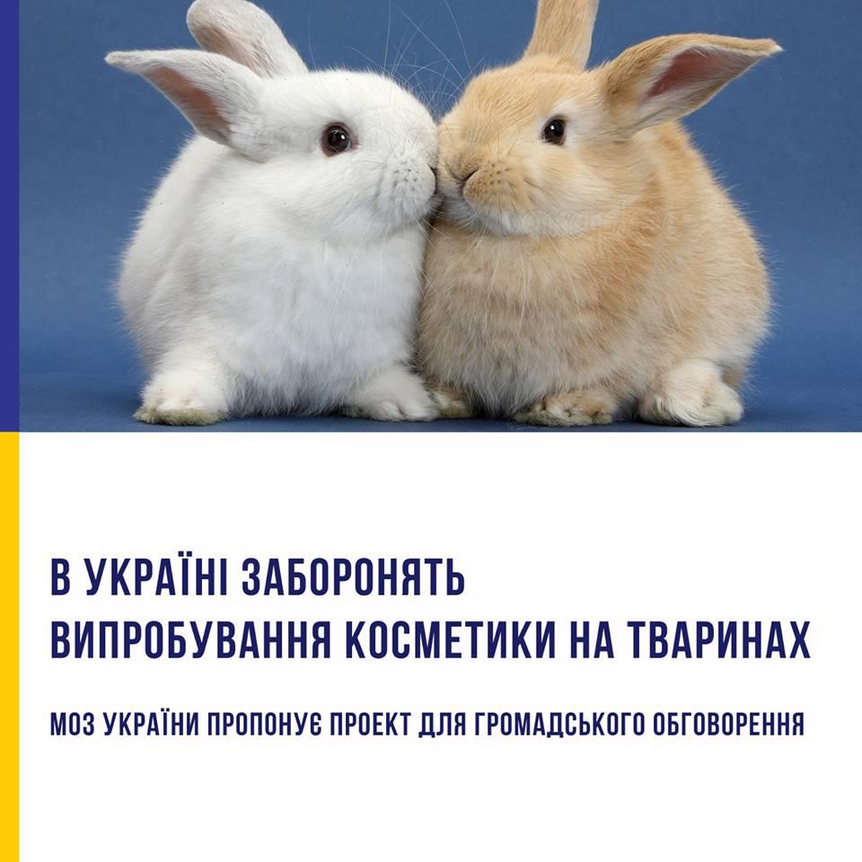 МОЗ хоче заборонити випробування косметики на тваринах та шкідливі консерванти