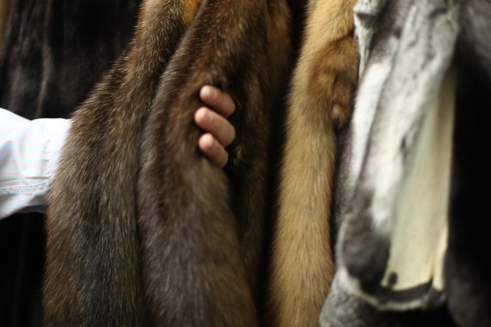 Сербія заборонила вбивство тварин для виробництва хутра