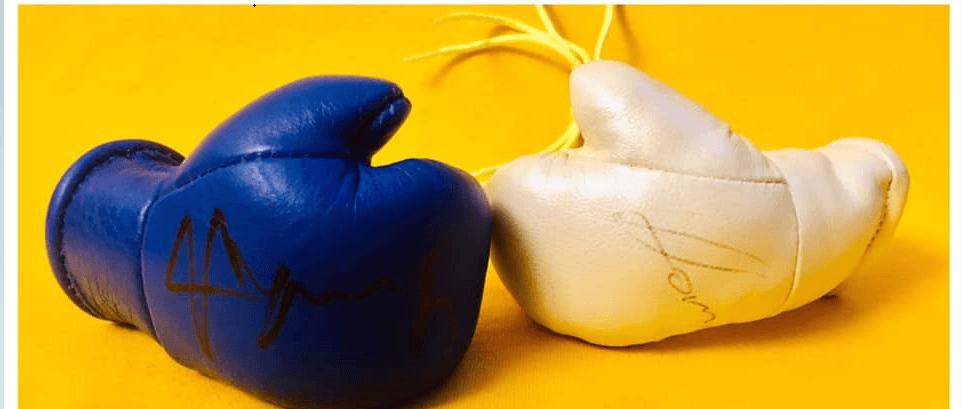 На аукціон виставили боксерські рукавички з автографами Усика та Ломаченка, щоб допомогти маленькому франківцю (ФОТО)