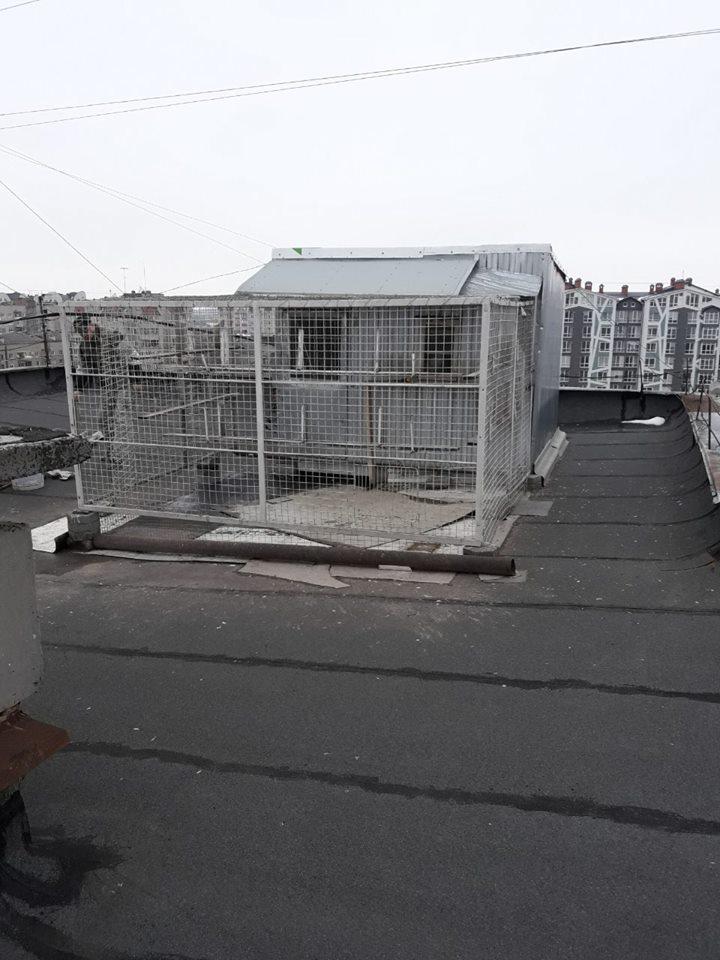 У франківській багатоповерхівці любителі голубів продірявили дах (ФОТО)