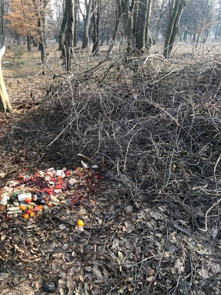 Франківці прибирають свої подвір'я, а сміття викидають у міський парк (ФОТО)