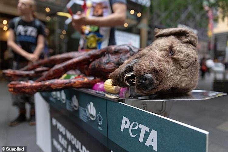 А вас би шокував смажений собака? Вражаюча акція збурила Австралію (ВІДЕО)