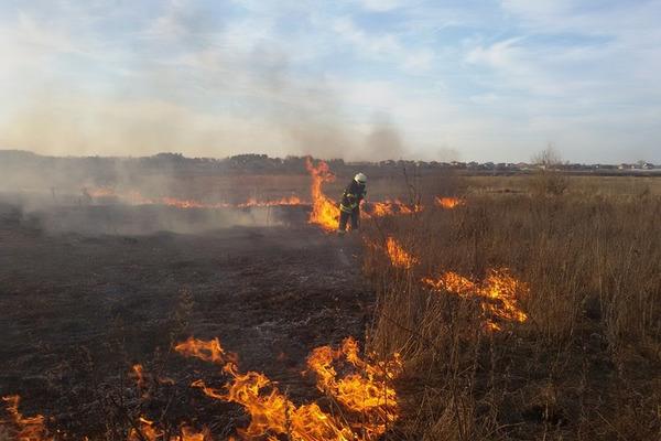 Рятувальники закликають прикарпатців не провокувати пожеж в природних екосистемах