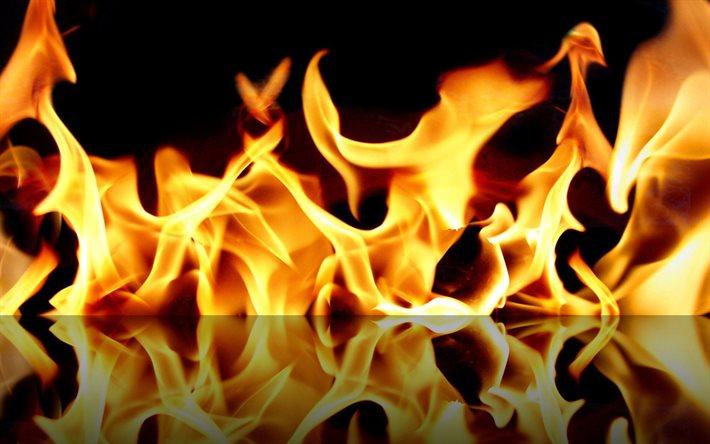 Впродовж доби на Прикарпатті у пожежі загинула людина, ще одна -травмована