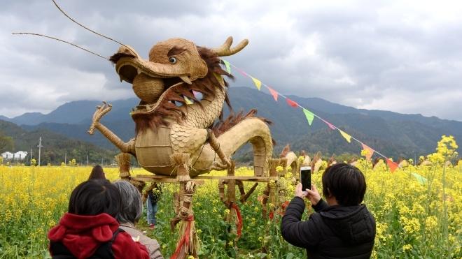 У Китаї учасники Фестивалю квітів встановили на полях опудала драконів і свинки Пеппи (ФОТО)