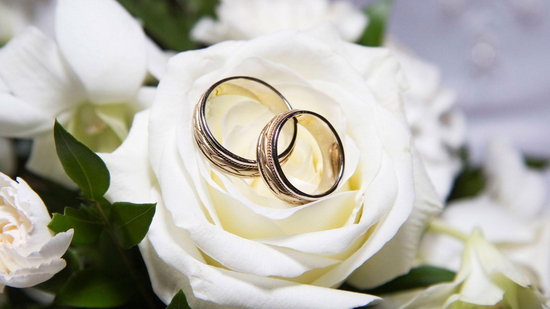 У минулому році більше 4 тисячі пар із Прикарпаття подали заяву на розлучення (ВІДЕО)