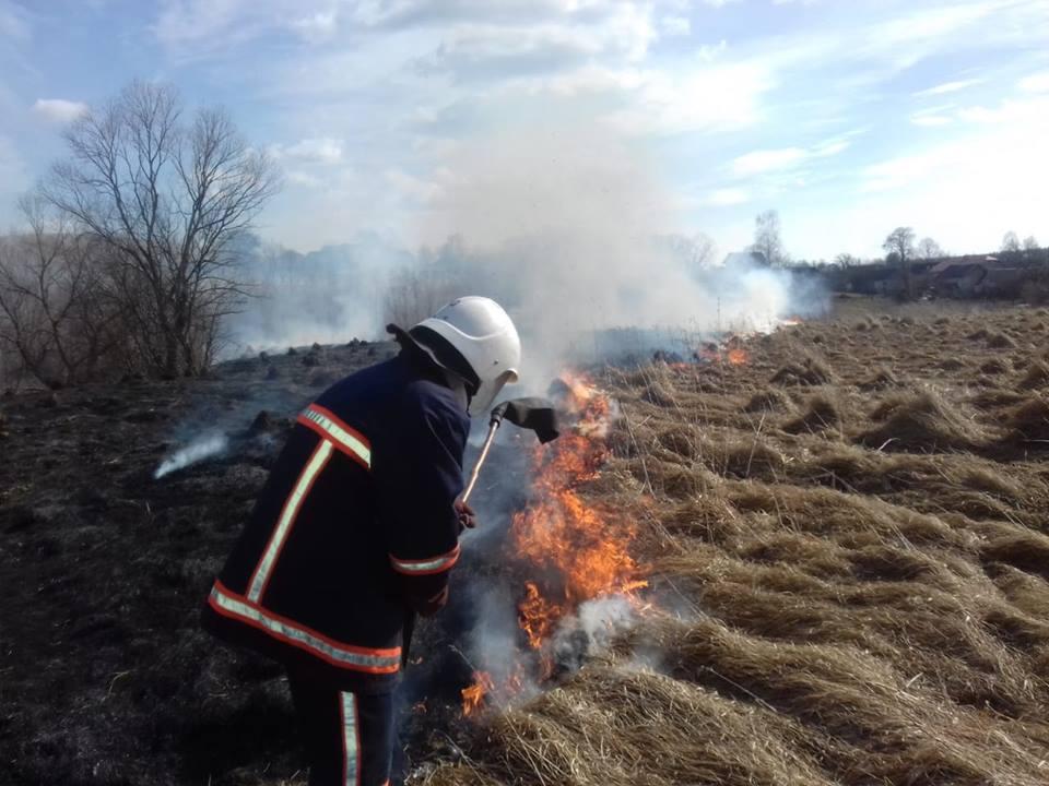 Підпали сухої трави обійшлися Долинщині маже у три мільйони гривень
