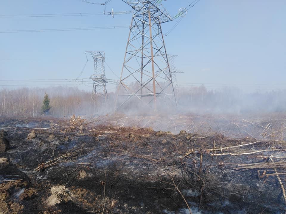 В передмісті Івано-франківська трапилася масштабна пожежа в екосистемі (фоторепортаж)
