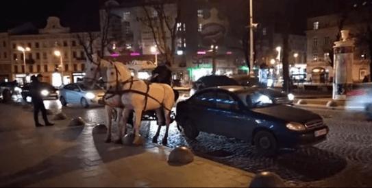 У центрі Львова п'яний водій карети з кіньми ледь не розчавив людей на переході і влетів у легковик (ВІДЕО)