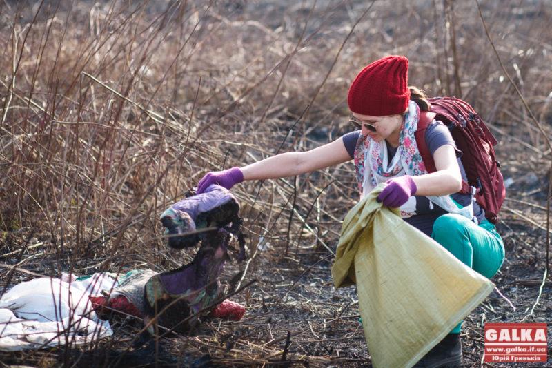З нагоди Дня довкілля прикарпатські лісівники проведуть загальнообласну толоку