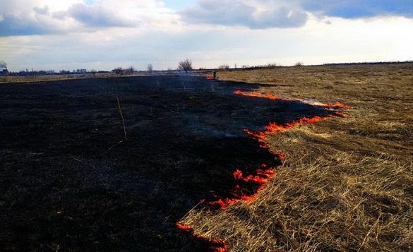 Прикарпатці продовжують палити суху рослинність – за день спровокували 21 пожежу
