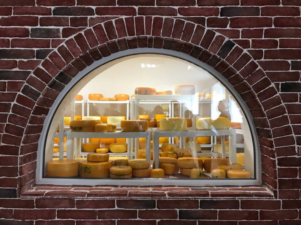 Австрійський, голландський, французький. Як на Буковині селяни самі варять сири за європейськими рецептами (ФОТО)