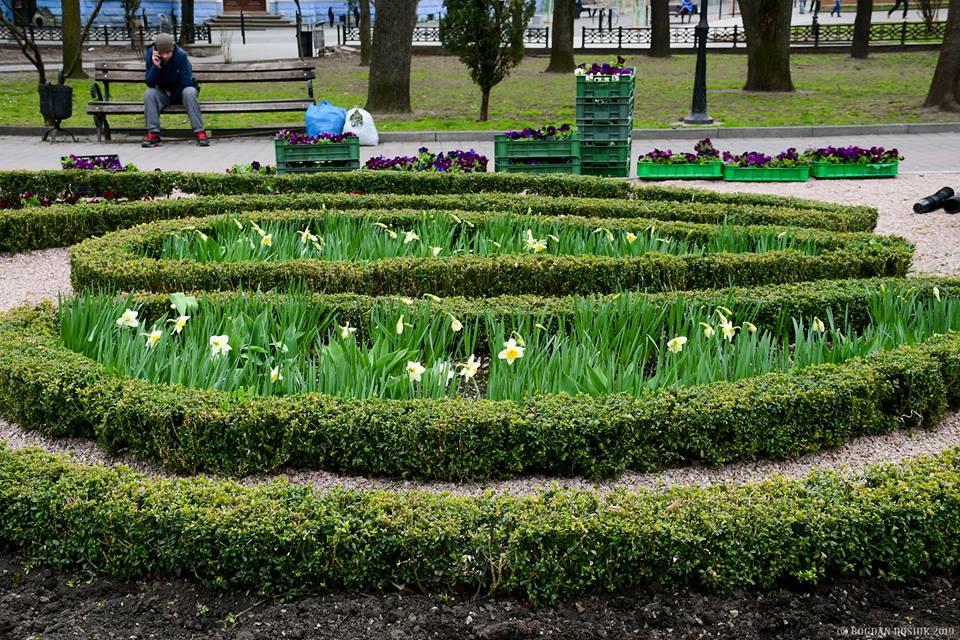 У 2019 в місті вже висадили 600 дерев, тисячі кущів та десятки тисяч квітів