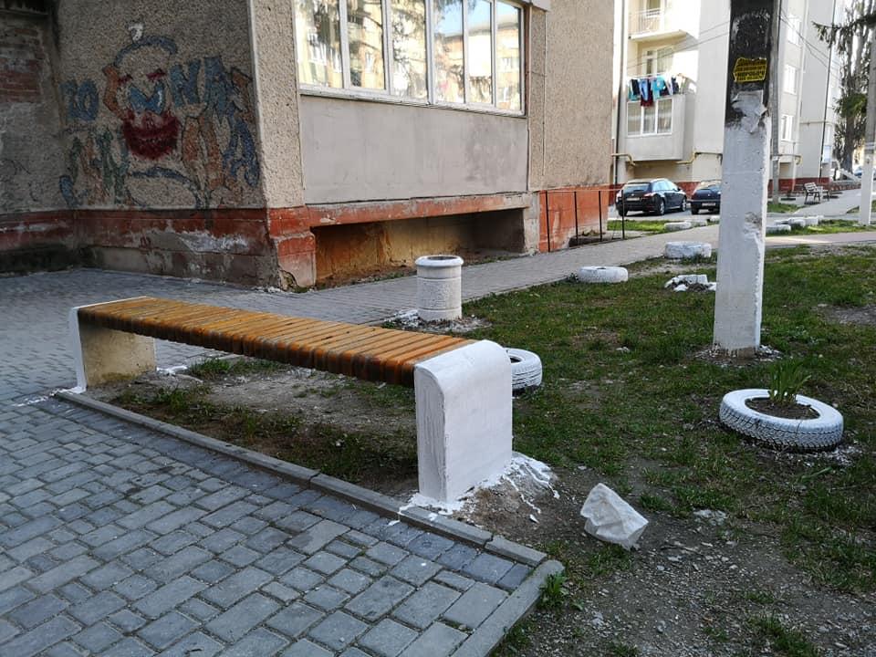 Франківців просять позбутися радянської практики білити дерева та бордюри