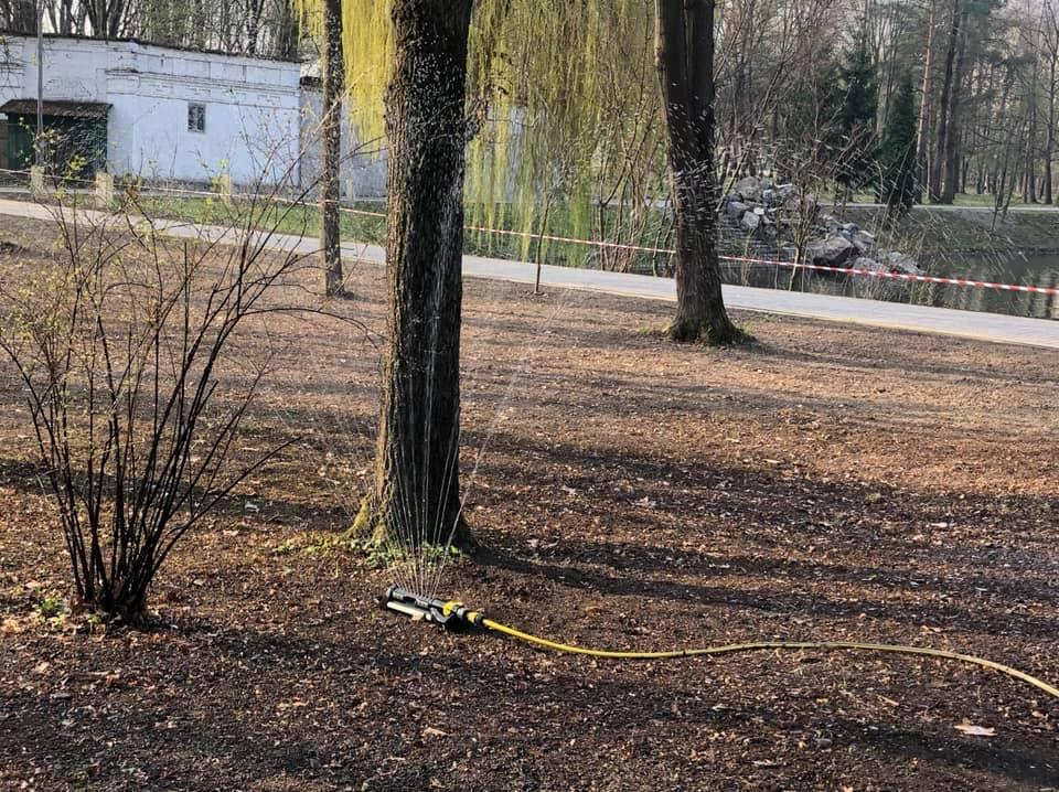 Як у міському парку відновлюють газони (ФОТО)