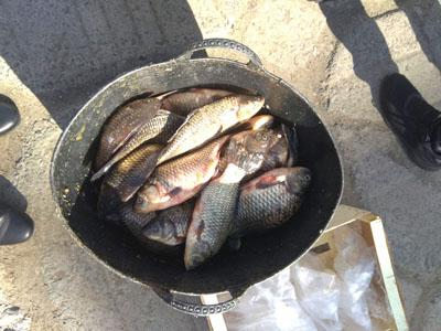 У Надвірній спіймали нелегального торговця рибою (ФОТО)