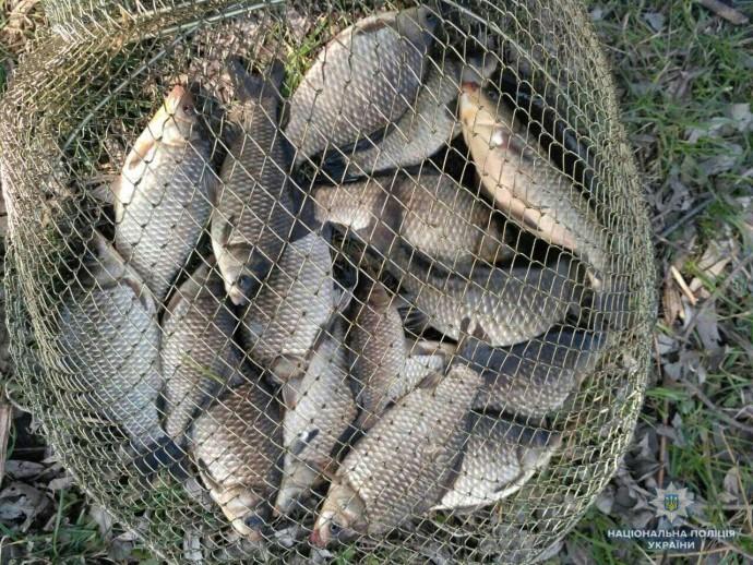 Прикарпатці наловили риби на понад 11 тисяч гривень штрафів