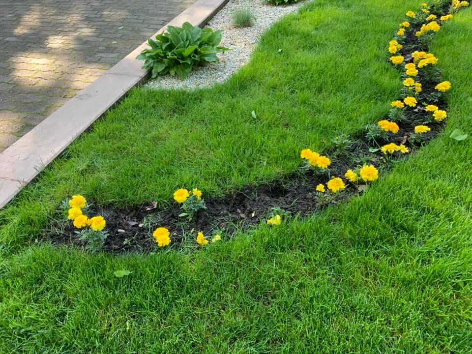 Невідомі продовжують красти квіти у міському парку (ФОТОФАКТ)