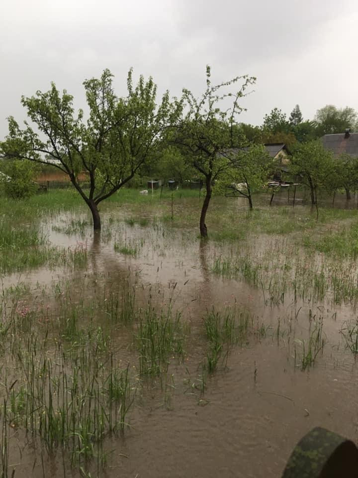 У селі на Прикарпатті дорогу змило водою (ВІДЕО)