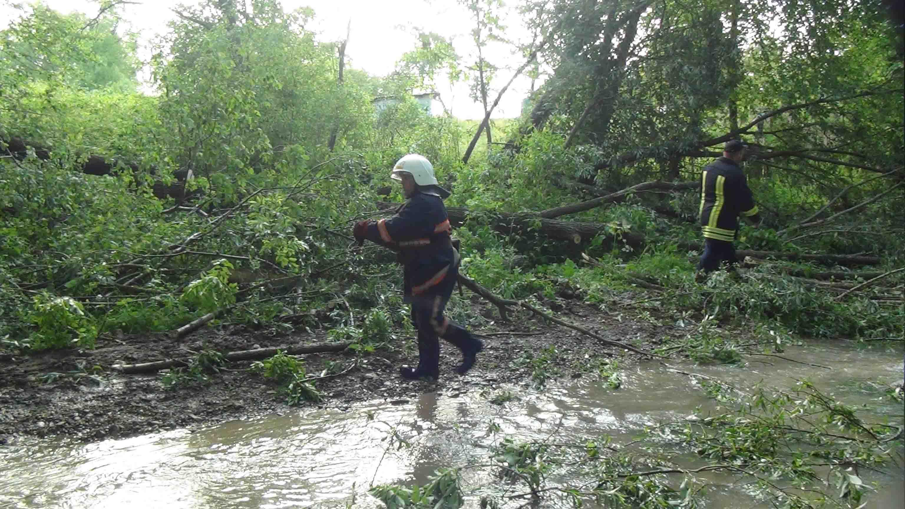 Негода на Прикарпатті: рятувальники здійснили вже понад 170 виїздів (ФОТО, ВІДЕО)