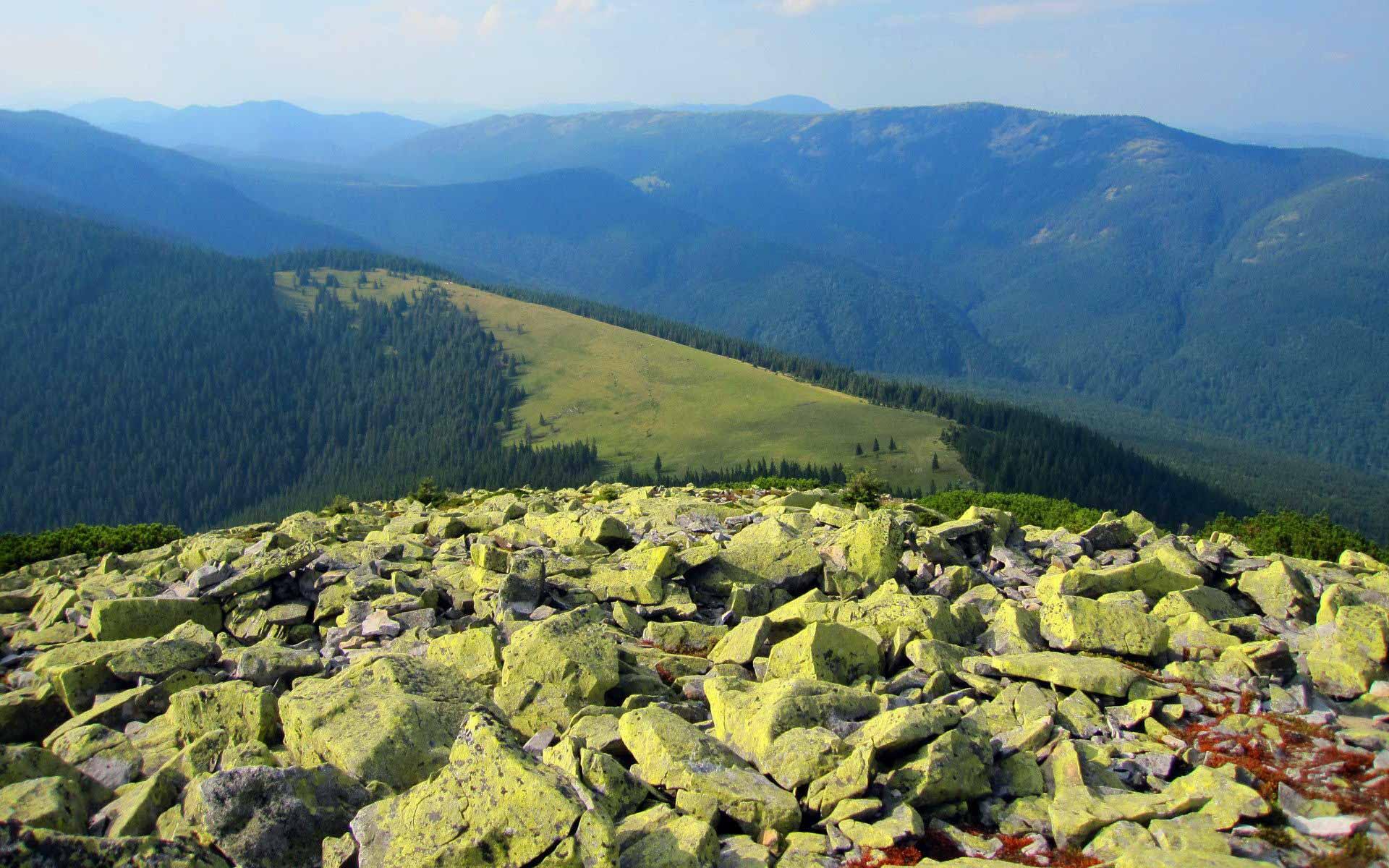 В Івано-Франківську створили мобільний додаток для походів Карпатами
