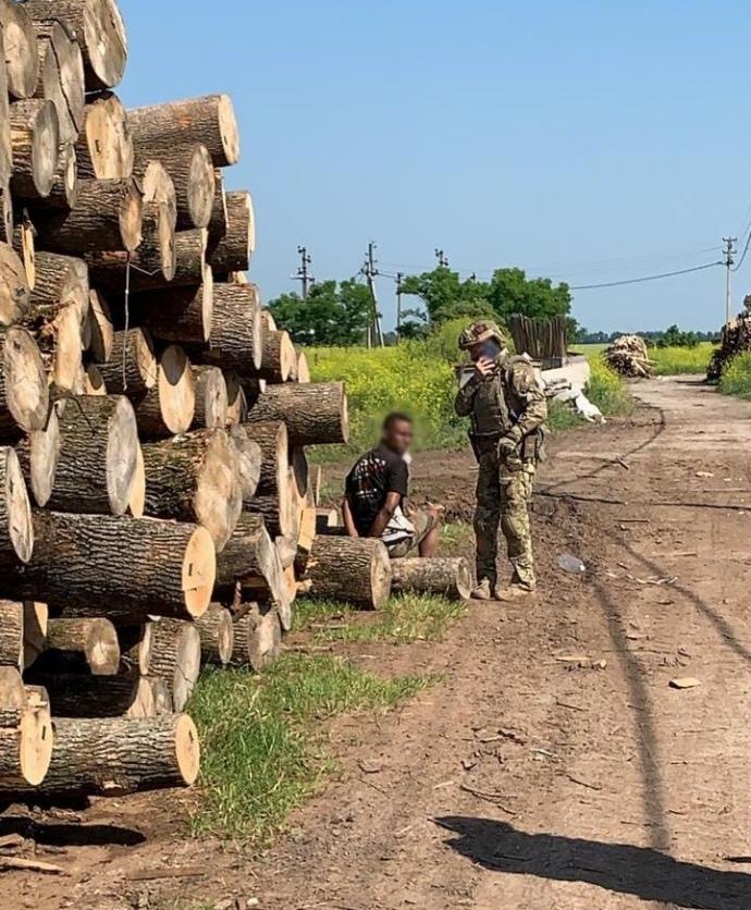Африканців і китайців використовували на переробці лісу на Київщині (ФОТО)