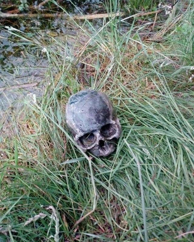 На Прикарпатті поблизу озера знайшли людський череп (ФОТО)