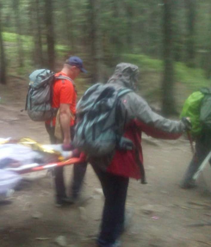 У горах травмувалась 11-річна дівчинка, а 16-річного хлопчика – вкусила змія (ФОТО)