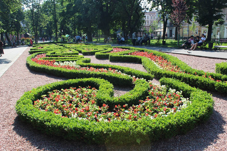 У середмісті Івано-Франківська клумби зацвіли яскравими літніми квітами (ФОТО)