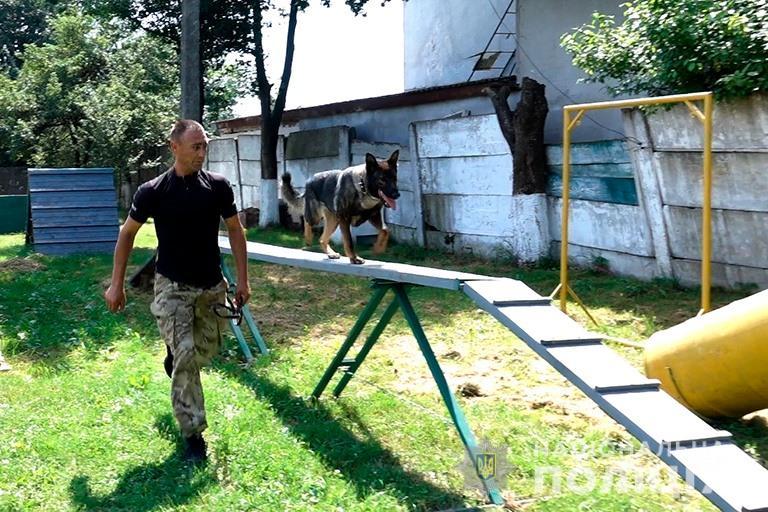 Шукають зброю і ловлять втікачів: франківські кінологи показали дітворі, як працюють службові собаки (ФОТО, ВІДЕО)