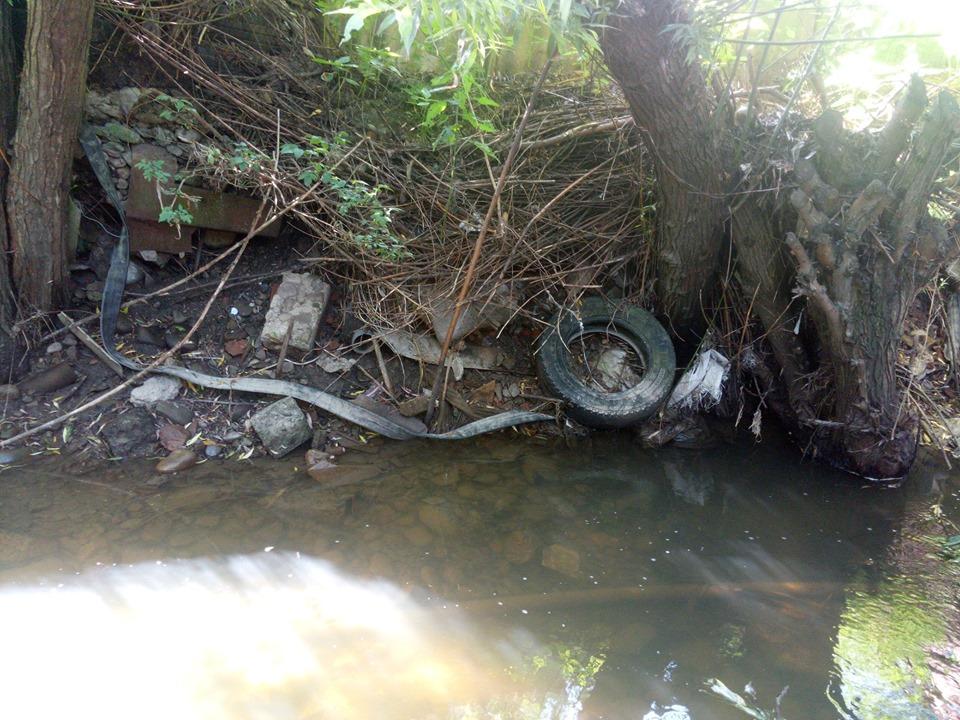 Активісти виявили на річці Млинівка труби, через які зливали нечистоти (ФОТО, ВІДЕО)