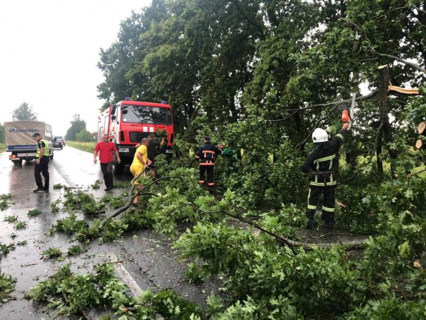 На Прикарпатті після негоди відновили електропостачання у 75 містечках і селах