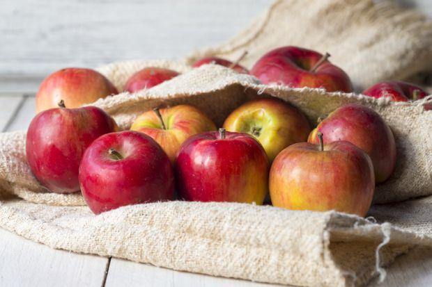 Галка рекомендує: 5 причин негайно з'їсти яблуко