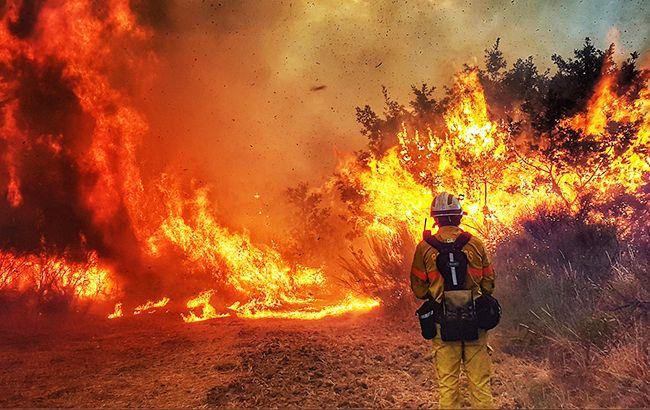 В Іспанії третій день поспіль не можуть загасити масштабну лісову пожежу (ВІДЕО)