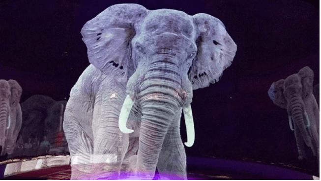 У німецькому цирку справжніх тварин замінили їх голограмами (ФОТО,ВІДЕО)