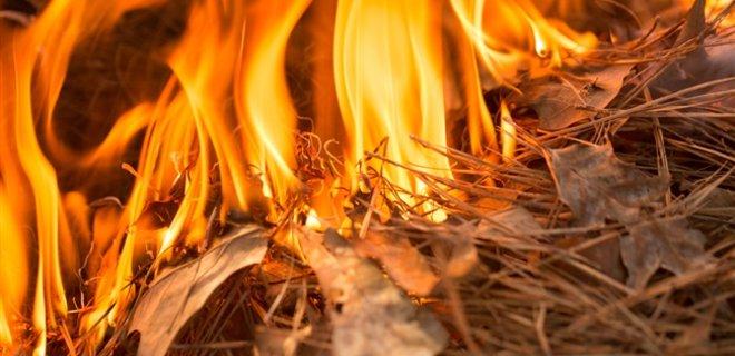Палила сміття й траву: на Прикарпатті жінка загинула у вогні