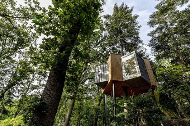 У Данії відкрили перший готельний номер на дереві (ФОТО)