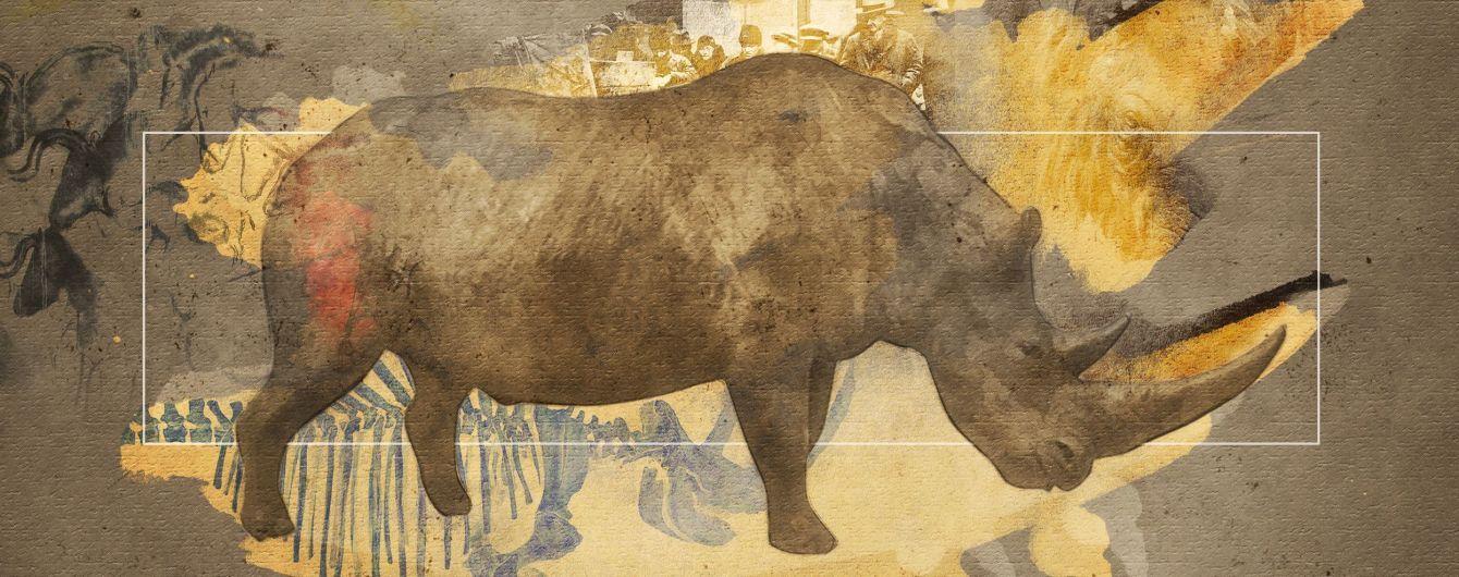 Мамонт та волохатий носоріг. Яких тварин льодовикового періоду знайшли на Прикарпатті та що можуть знайти ще (ВІДЕО)