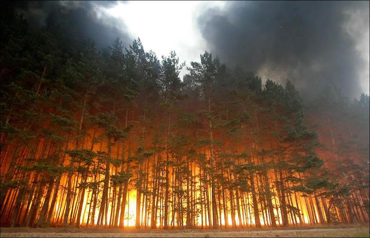 В Росії гігантську пожежу сибірських лісів гаситимуть шамани