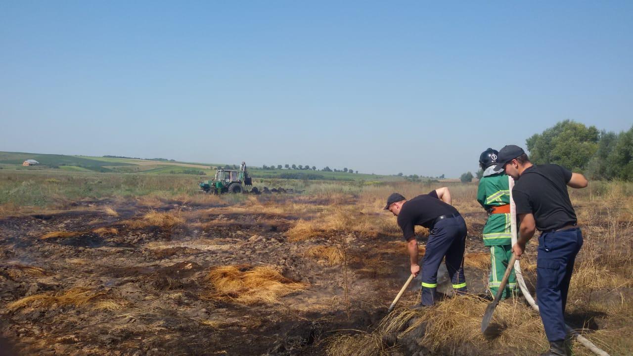 Минулої доби на Прикарпатті виникло 16 пожеж, з них 14 – сухої трави