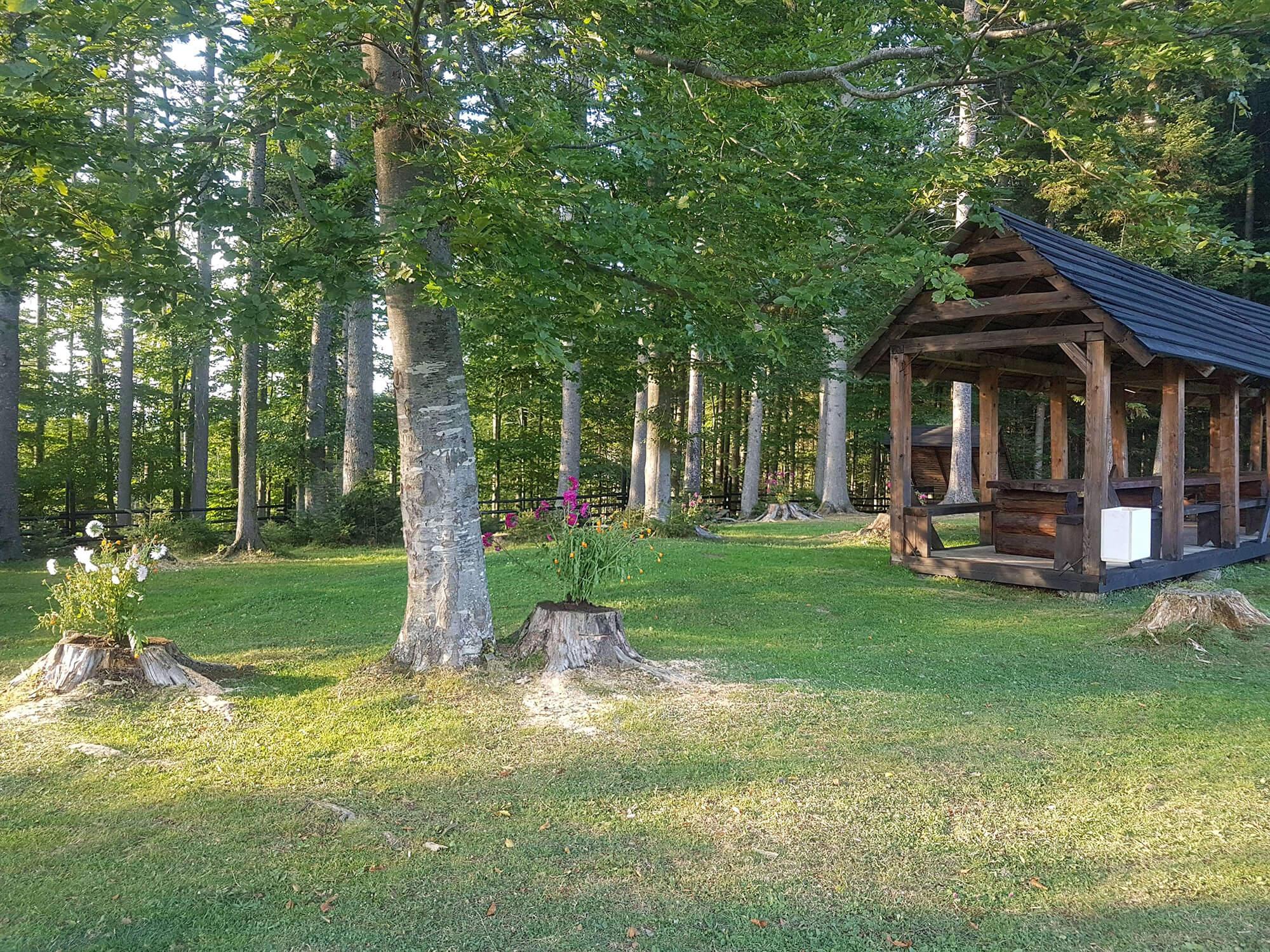 Альтанки та ландшафтотерапія: лісівники оновлюють рекреаційні місця у Карпатах (ФОТО)