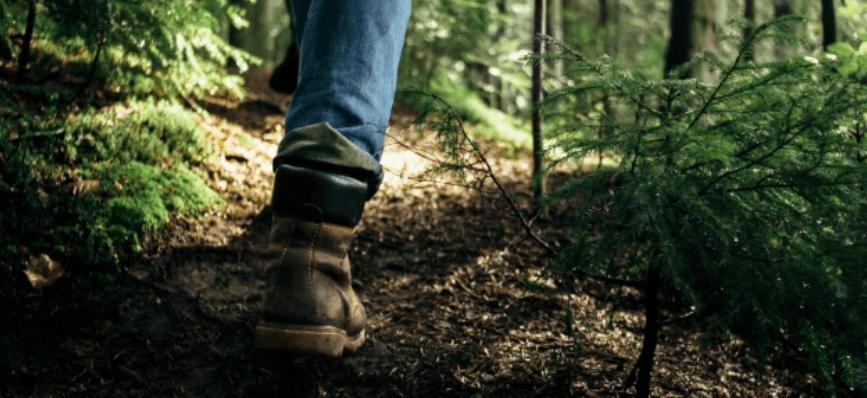 У Галицькому районі у лісі цілу ніч шукали і рятували 48-річного чоловіка