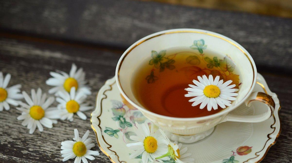 Галка рекомендує: кому і чому варто часто пити ромашковий чай