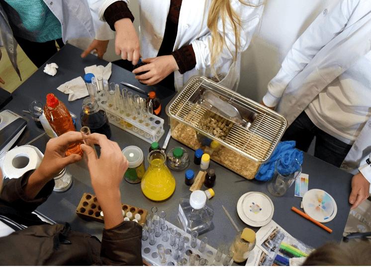 У Франківську відбувся перший Всеукраїнський фестиваль STEM-освіти (ФОТО)