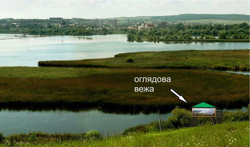 На Бурштинському водосховищі встановлять вежу для спостереження за птахами (ПРОЄКТ)