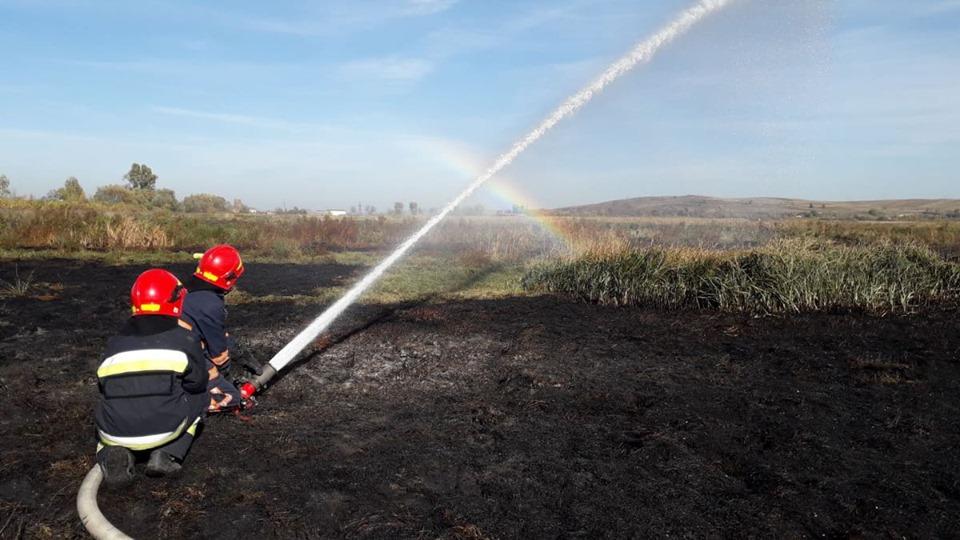 На Прикарпатті рятувальники ліквідовують торф'яну пожежу