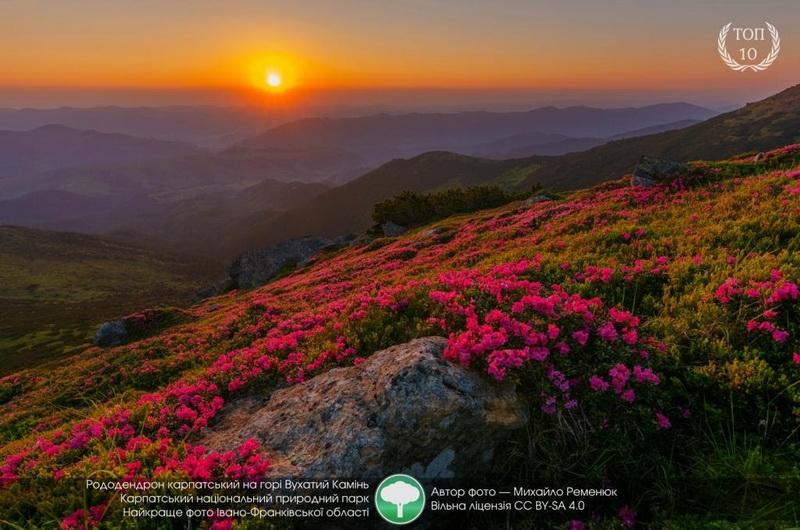Карпатські фотографії потрапили у топ-10 міжнародного конкурсу Вікіпедії (ФОТО)