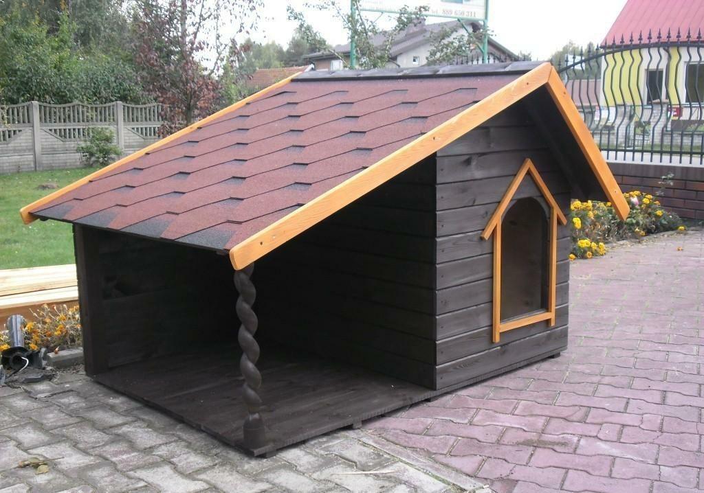 Юних косівчан запрошують змайструвати будку мрії для собаки
