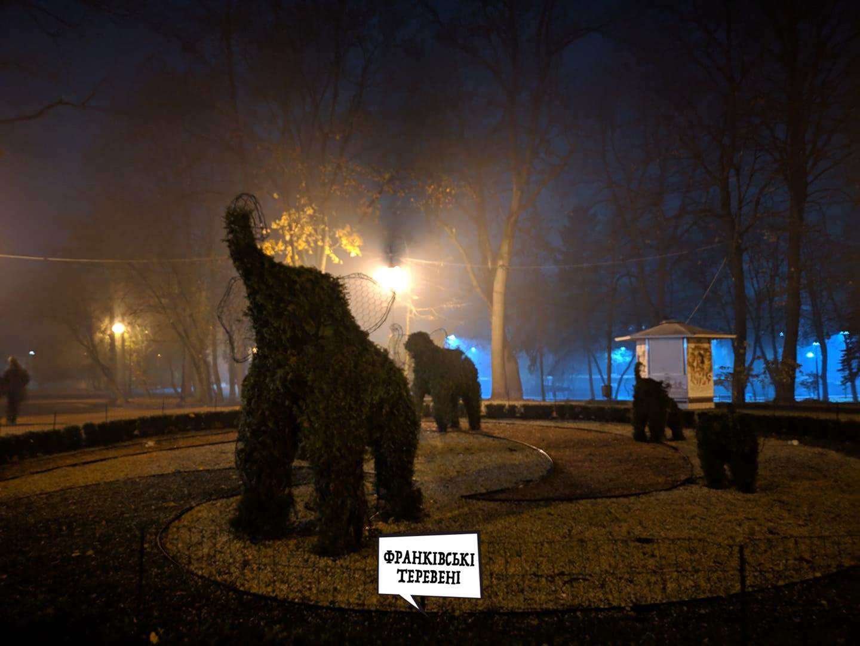 Слони в тумані. У мережі показали осінній парк ввечері (ФОТО)